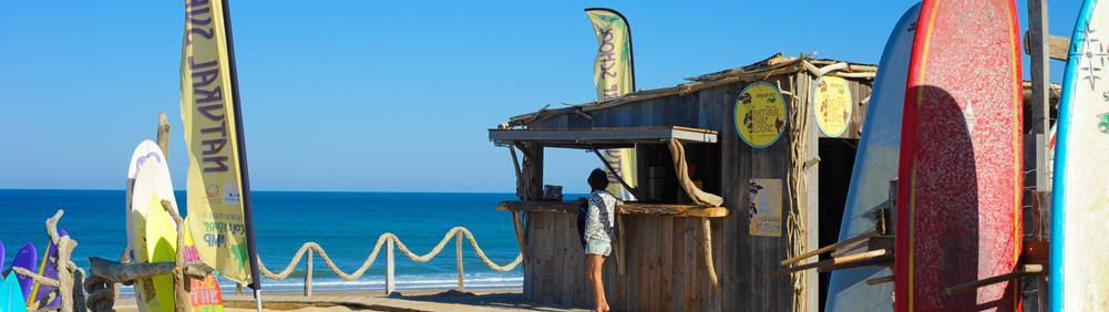 Natural Surf School offers a wide range of longboards to rent